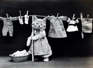 洗濯 ネット メリット デメリット