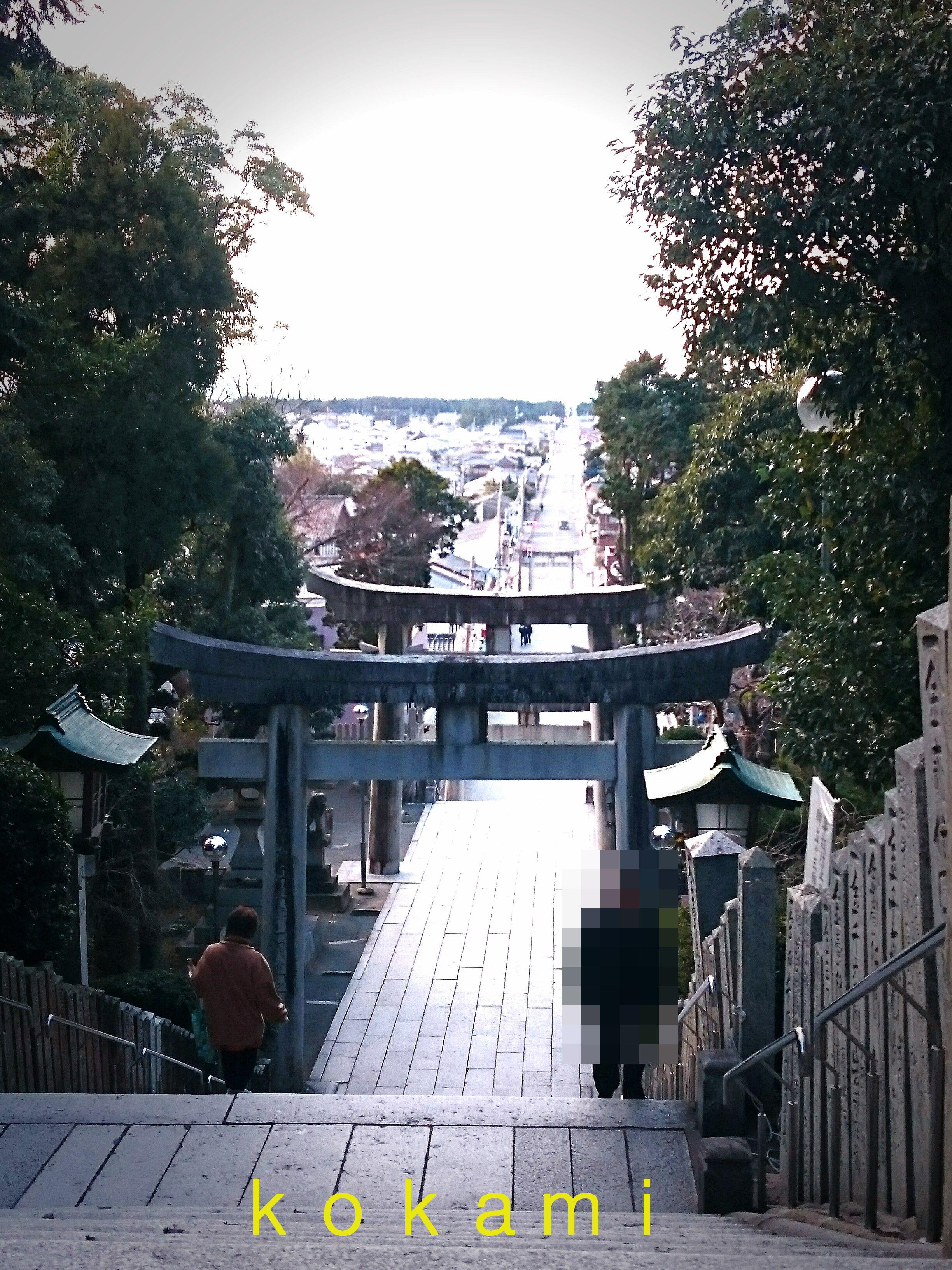 宮地嶽神社 光の道 時期