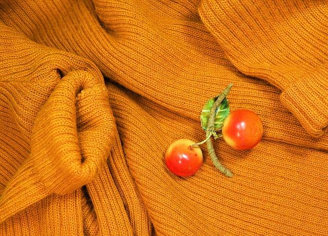 セーター 穴 虫