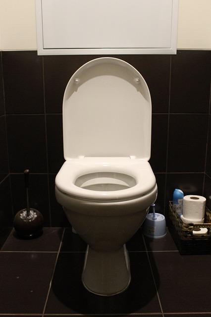 スマホ トイレ 流した