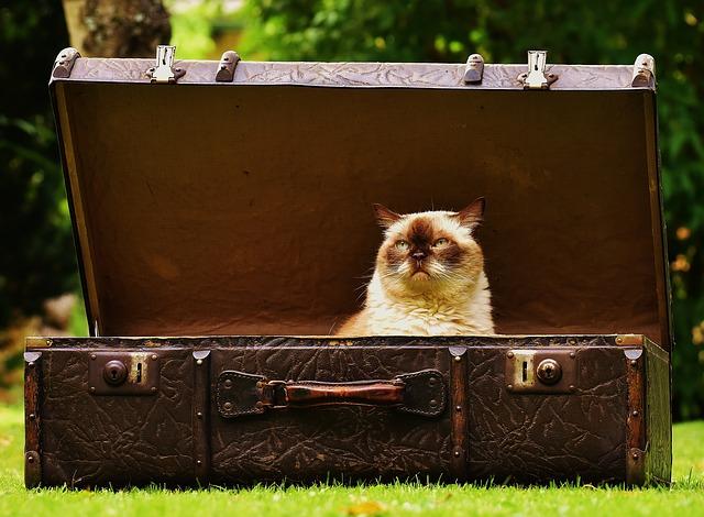 スーツケース 鍵 ダイヤル どっち
